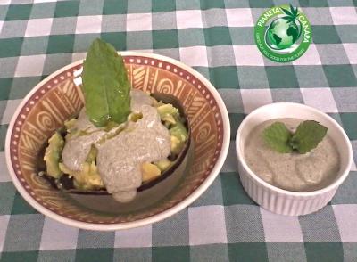 Ricetta per un delizioso antipasto con  avocado e crema condimento per insalata con yogurt e proteine di canapa in polvere (con alternativa vegana). Per vegetariani, crudisti, vegani, tutti
